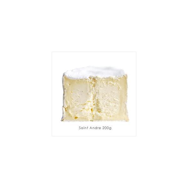サンタンドレ チーズ 業務用 フランス産 乳脂肪分が最強 まるでバターのような白カビタイプのチーズです  200g