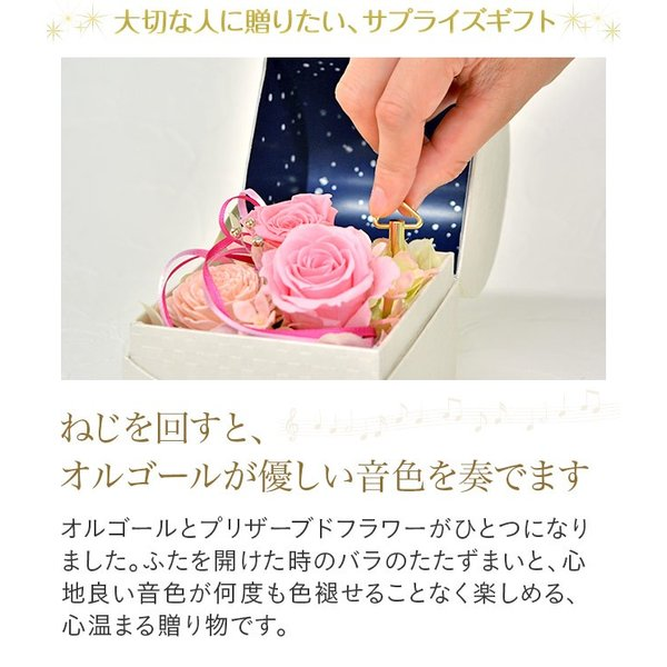 日比谷花壇 プリザーブドフラワー  5色から選べる 「オルゴールフラワー(星に願いを)」|hibiyakadan|02