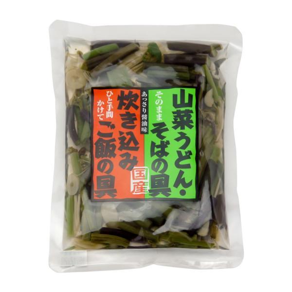 山菜 ミックス 国産 そば・うどんの具 山の珍味 カンタン ラクうま ゆうパケット|hida-yama-sachi|02