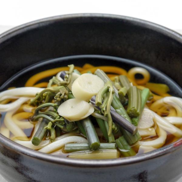 山菜 ミックス 国産 そば・うどんの具 山の珍味 カンタン ラクうま ゆうパケット|hida-yama-sachi|04