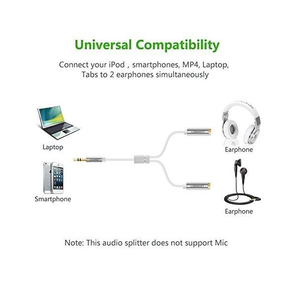 Ugreen 3.5mm オーディオ分配ケーブル オス - メス(×2) ヘッドホン マイク分岐 金メッキプラグ iPad iPhone iPod