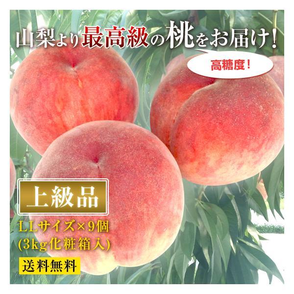 山梨県産の最高級もぎたての桃[上級品]【産地直送品】−LL・9玉 約3kg【送料無料】
