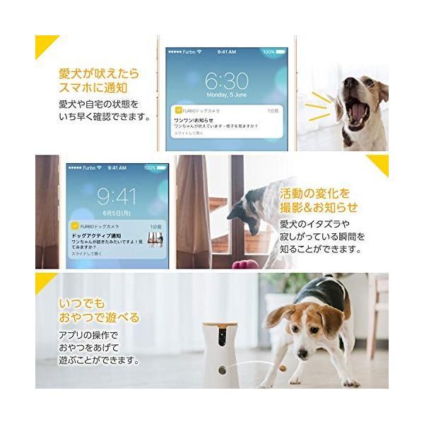 Furbo ドッグカメラ : ペットカメラ 飛び出すおやつ 写真 動画 双方向会話 犬 留守番 iOS Android AI通知|hikari-net|04