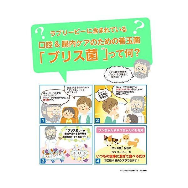 ラブリービー  ペット用ブリアン  0.5g×30包|himawari-market|06