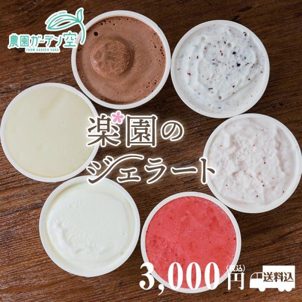楽園のジェラート 90ml×6個 3,000円 送料込 自社農園産いちご、レモン使用 hiratukaya