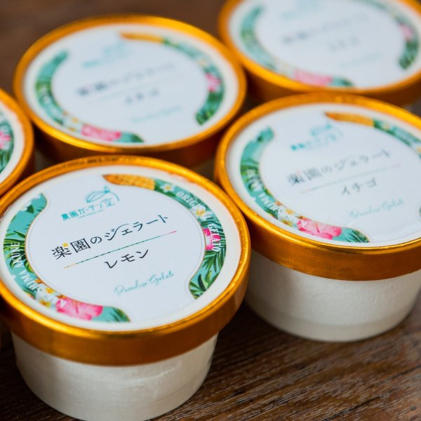 楽園のジェラート 90ml×6個 3,000円 送料込 自社農園産いちご、レモン使用 hiratukaya 02