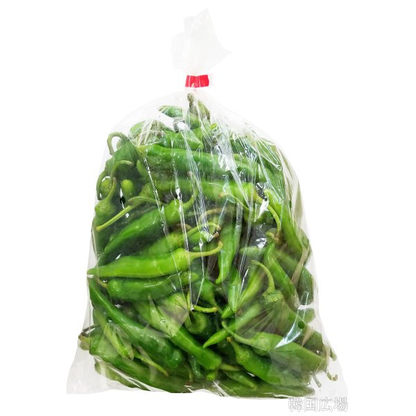 生 青唐辛子 (辛口) 1kg 韓国産 hiroba