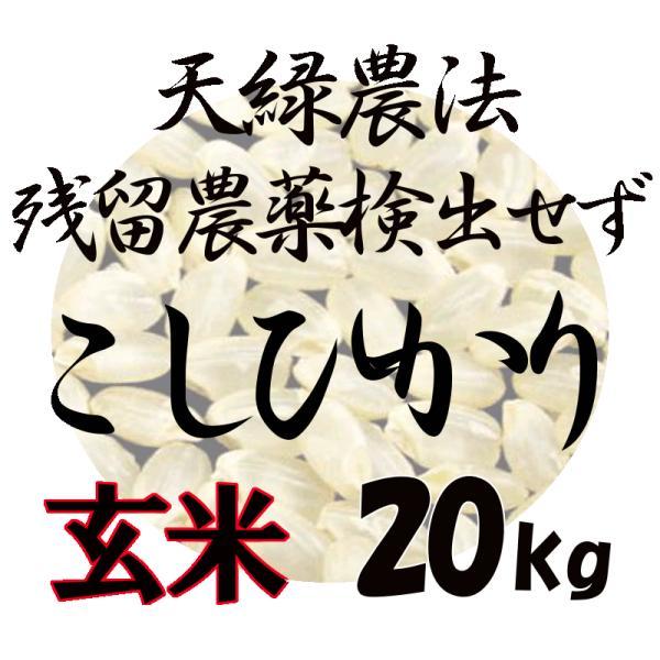 令和2年産 藍藻育ち 天緑農法 こしひかり 20kg(5kg×4) 高LPS 残留農薬250項目すべて検出せず 藍の舞 無農薬 玄米量り売り 2020 送料無料