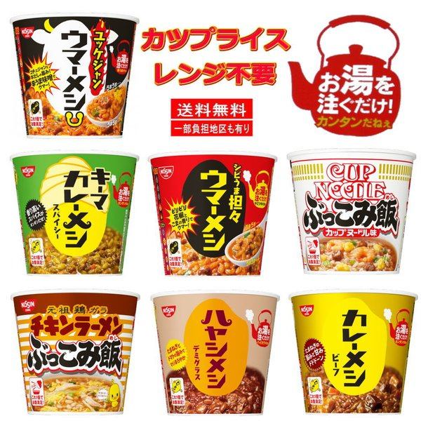 時短食レトルト日清食品カツプごはんカレーメシハヤシメシぶっこみ飯6個セット関東圏