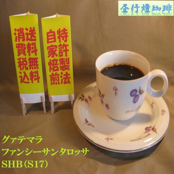 グアテマラファンシーサンタロッサSHB(S17)400g送料無料消費税込み|hiruandoncoffee