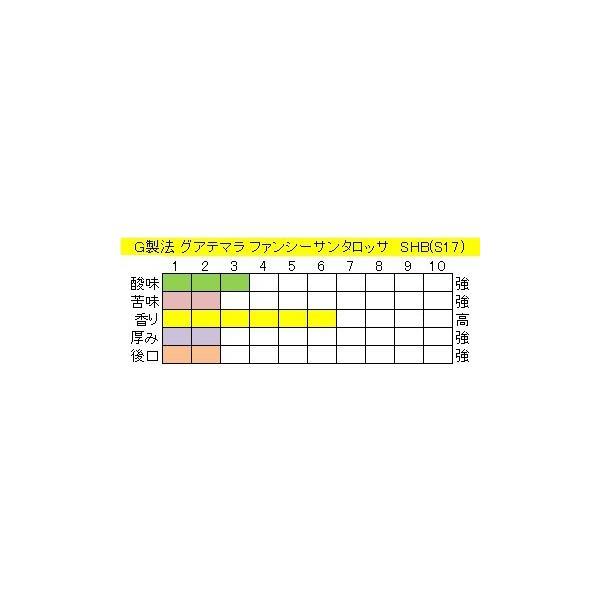 グアテマラファンシーサンタロッサSHB(S17)400g送料無料消費税込み|hiruandoncoffee|03