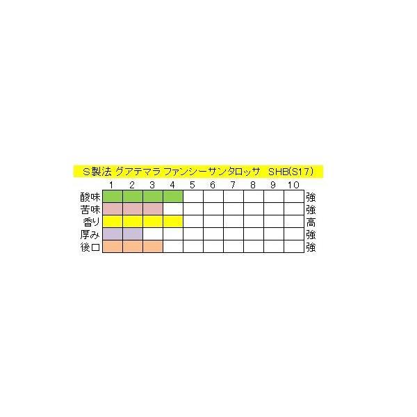 グアテマラファンシーサンタロッサSHB(S17)400g送料無料消費税込み|hiruandoncoffee|04