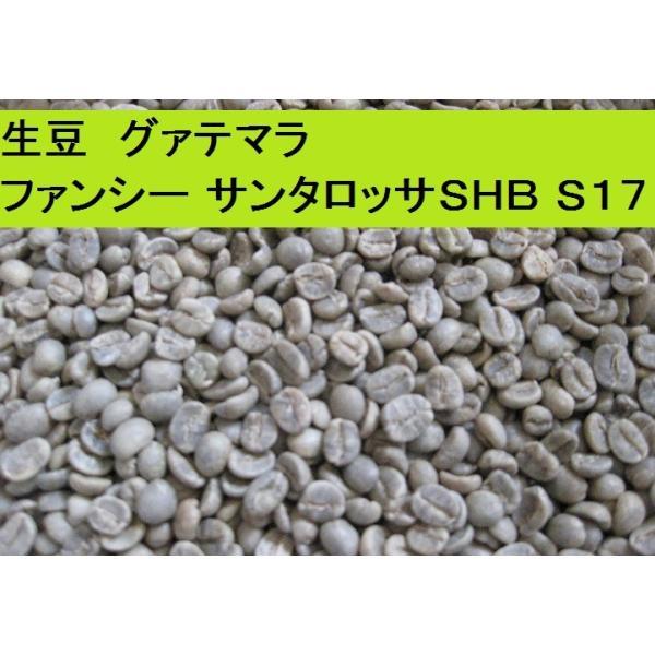グアテマラファンシーサンタロッサSHB(S17)400g送料無料消費税込み|hiruandoncoffee|06