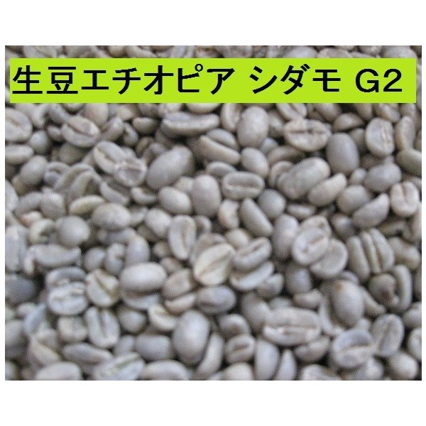 モカ【エチオピア シダモ G2】(400g)送料無料消費税込み|hiruandoncoffee|04