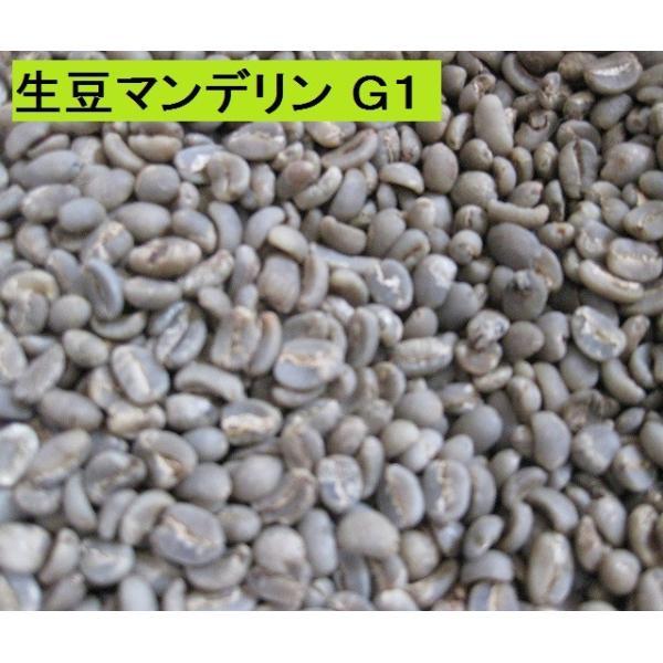 マンデリン G-1(400g)送料無料消費税込み|hiruandoncoffee|06