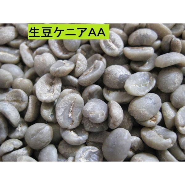 アイスコーヒー ケニア 【K-100】 400g 送料無料・消費税込み|hiruandoncoffee|03