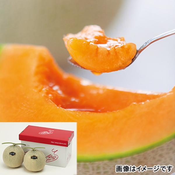 北海道 富良野厳選赤肉メロン大玉2個 |直送品|お取り寄せグルメ ギフト プレゼント HIS  ID:H0030036