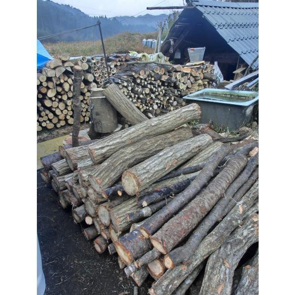 木炭 炭  自社製 大分の椚炭(くぬぎ炭)切炭6-6.5cm5kg 大分県産 最高級|hiyorinet|05