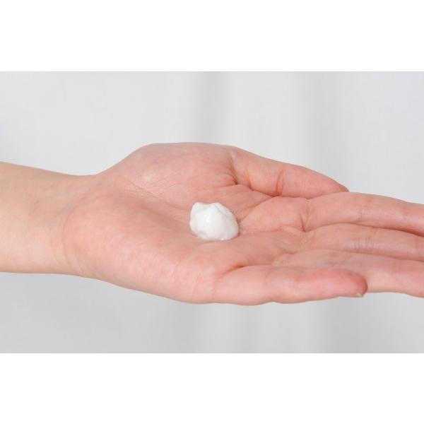 【送料無料】ラヴィプレシューズPGクリーム 100g・ラビプレ・プロテオグリカン・化粧品|hizuya|05