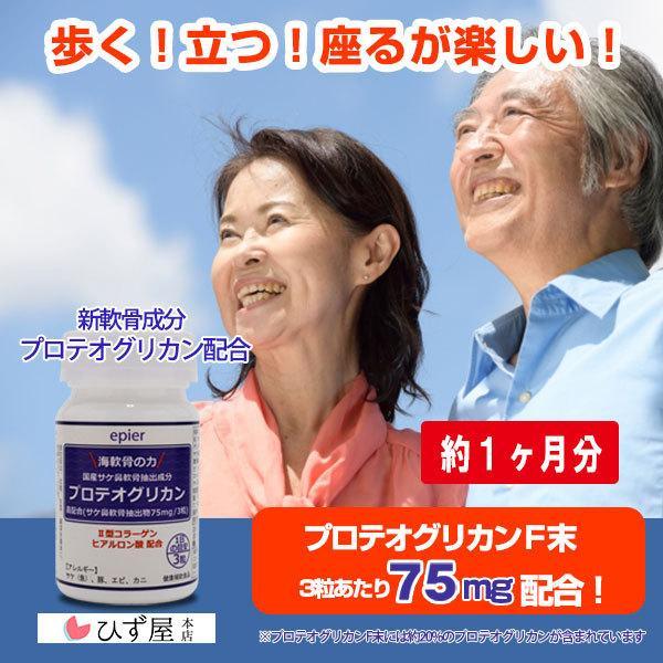 【送料無料】海軟骨の力・プロテオグリカン 90粒 (約30日分)・サプリ・軟骨成分全部入り|hizuya