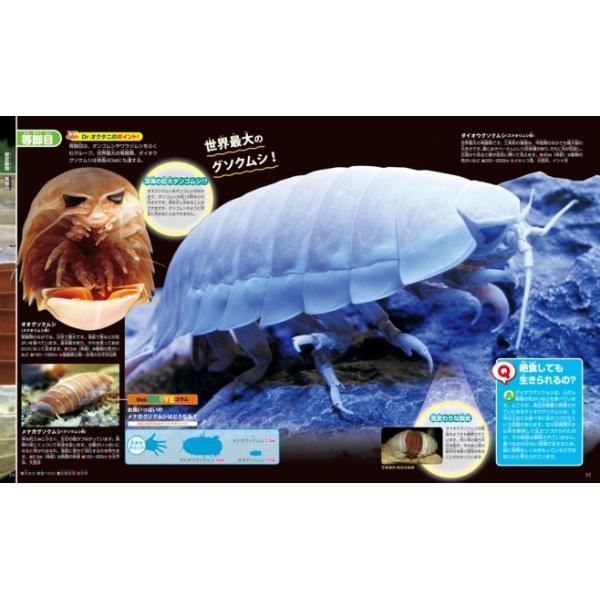 (講談社の動く図鑑MOVE) EX MOVE 深海の生きもの|hkt-tsutayabooks|02