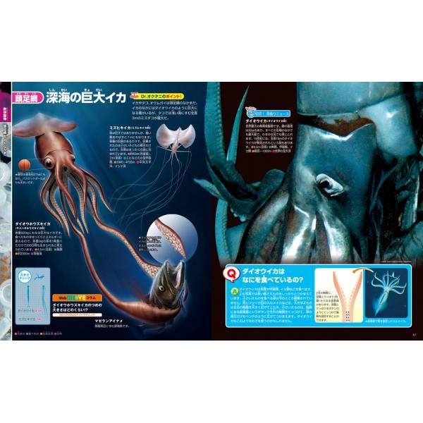 (講談社の動く図鑑MOVE) EX MOVE 深海の生きもの|hkt-tsutayabooks|03