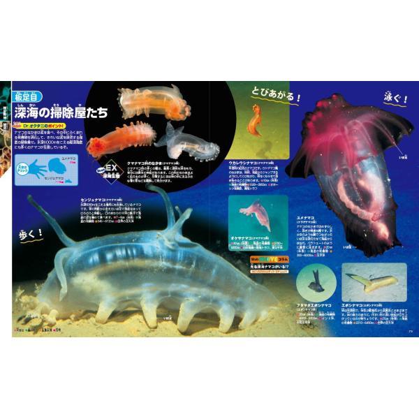 (講談社の動く図鑑MOVE) EX MOVE 深海の生きもの|hkt-tsutayabooks|05