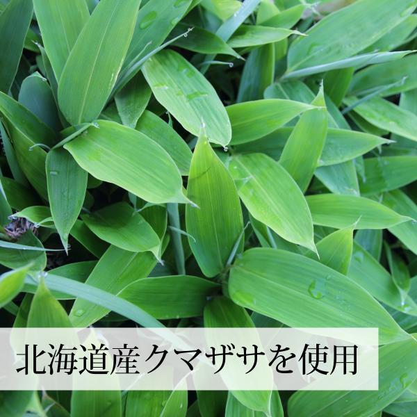 国産クマザサ青汁粉末100g 北海道産 熊笹フレッシュパウダー 野菜・フルーツスムージーに 隈笹|hl-labo|07