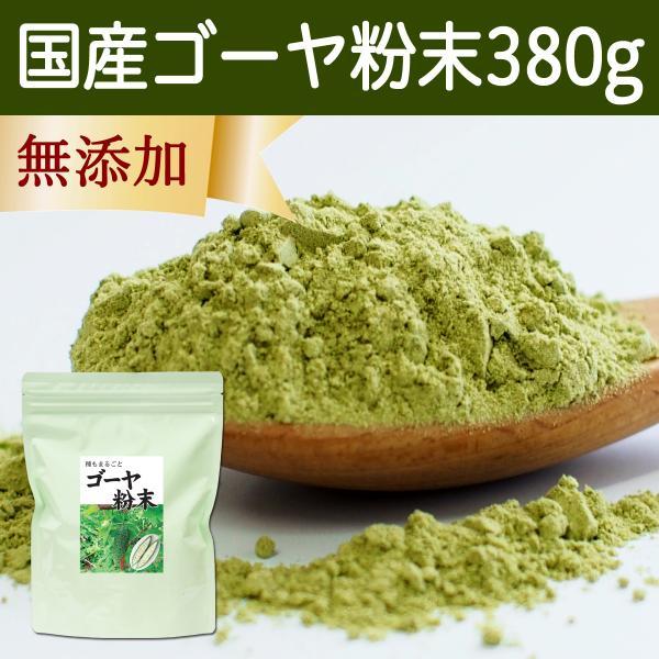 国産ゴーヤ粉末 380g 沖縄産 青汁 サプリメント 無添加 まるごと 丸ごと 100% ゴーヤー パウダー 苦瓜 にがうり ジュースに|hl-labo