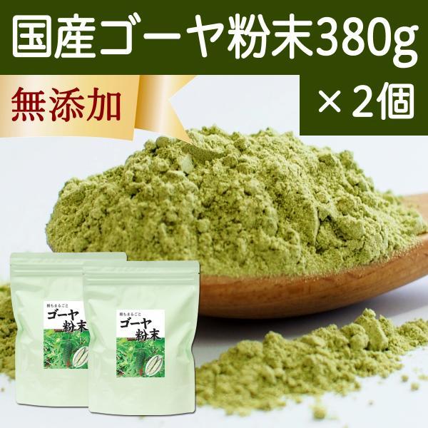 国産ゴーヤ粉末 380g×2個 沖縄産 青汁 サプリメント 無添加 まるごと 丸ごと 100% ゴーヤー パウダー 苦瓜 にがうり ジュースに|hl-labo