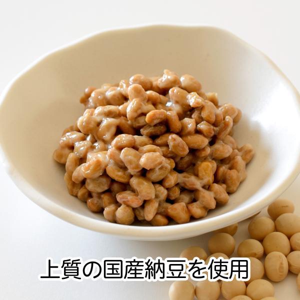 国産・乾燥納豆170g 国産大豆使用 フリーズドライ ふりかけ 無添加 ナットウキナーゼ 納豆菌 ポリアミン ポリポリ 安全 なっとう|hl-labo|03