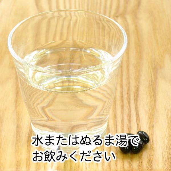 発酵黒にんにくカプセル・徳用300g(482mg×620粒) 青森産福地ホワイト六片種使用 えごま油含有 サプリメント hl-labo 04