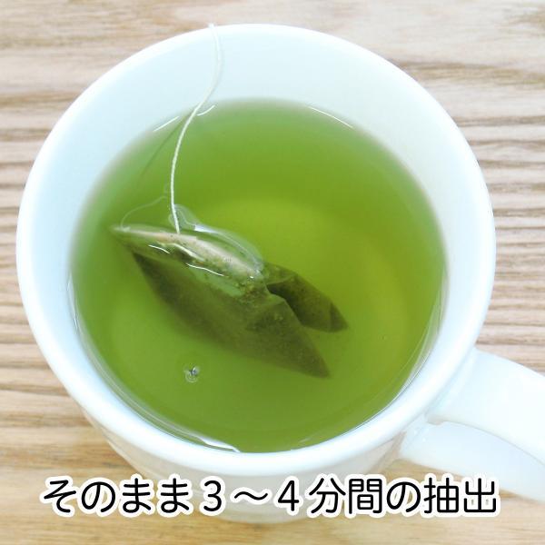 国産ギャバロン茶2g×40パック×2個 ギャバ茶 ガンマアミノ酪酸 手軽な糸付きティーバッグ ティーパック 自然健康社|hl-labo|05