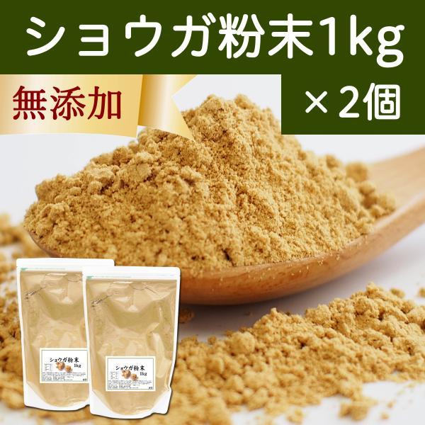 ショウガ 粉末 1kg×2個 生姜 パウダー しょうが 粉末 ジンジャー