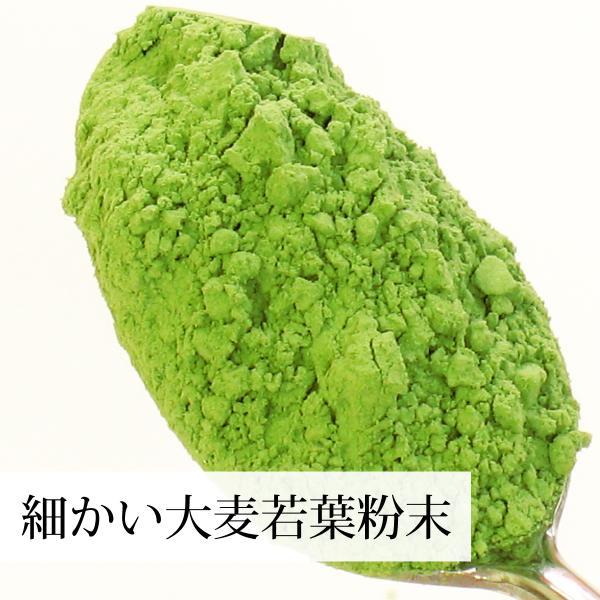 国産・大麦若葉粉末100g×2個 無添加 100% 青汁スムージーに 野菜不足の方に 無農薬|hl-labo|05