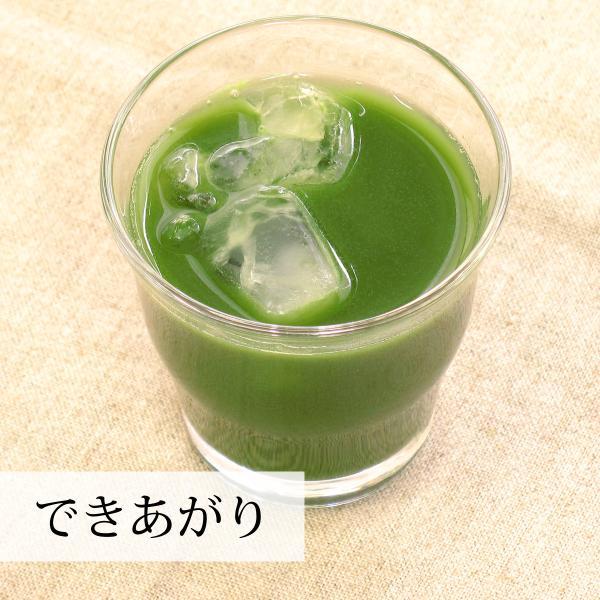 国産・大麦若葉粉末100g×2個 無添加 100% 青汁スムージーに 野菜不足の方に 無農薬|hl-labo|09