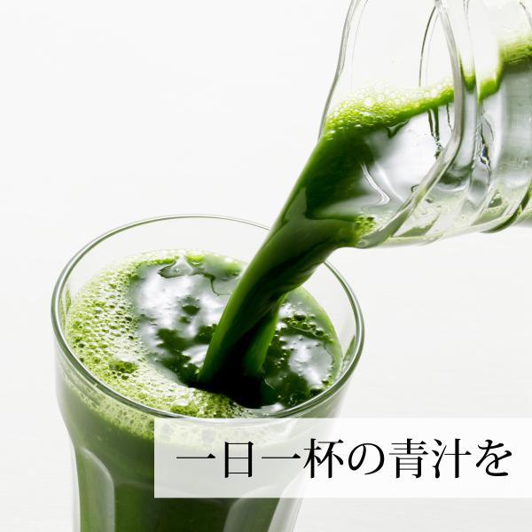 国産・大麦若葉粉末100g×2個 無添加 100% 青汁スムージーに 野菜不足の方に 無農薬|hl-labo|10