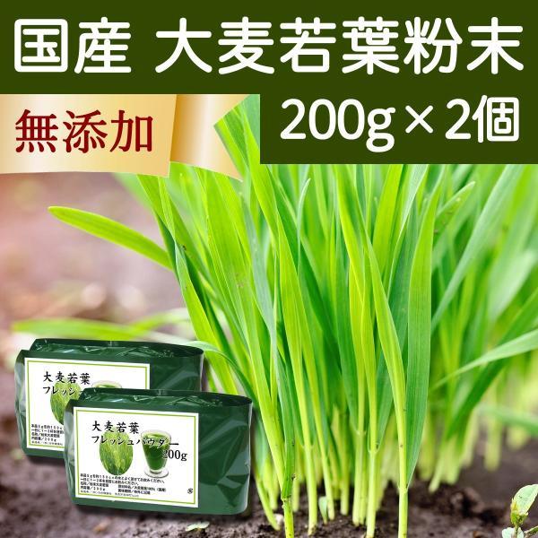 国産・大麦若葉粉末200g×2個 無添加 100% 青汁スムージーに 野菜不足の方に 無農薬 hl-labo