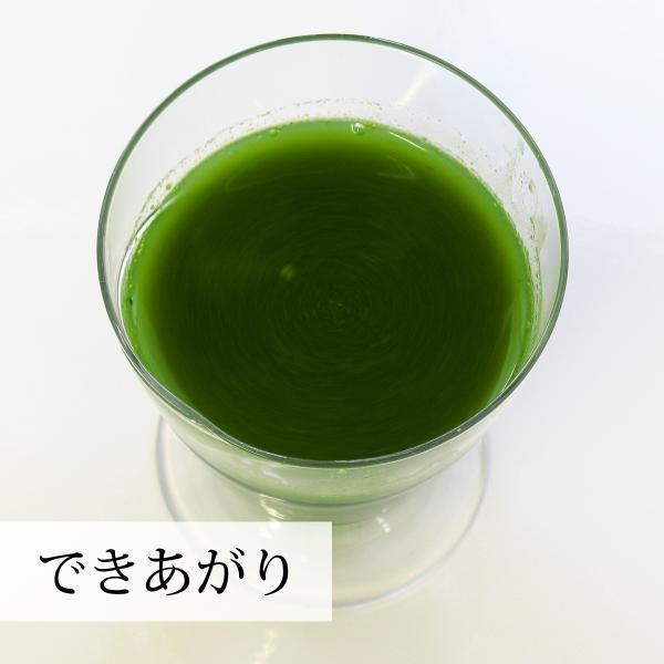 国産クマザサ青汁粉末200g×2個 北海道産 熊笹フレッシュパウダー 野菜・フルーツスムージーに 隈笹|hl-labo|11