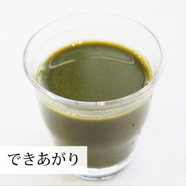 モリンガ青汁粉末 400g×2個 農薬不使用 無添加 100% フィリピン産 スーパーフード ミラクルツリー hl-labo 11