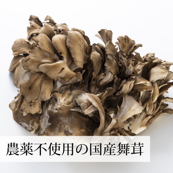 国産まいたけ粉末300g×2個 乾燥 舞茸パウダー 茶 農薬不使用 ベータグルカン mdフラクション 無農薬|hl-labo|04