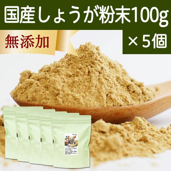 しょうが 粉末 100g×5個 生姜 パウダー ショウガ 粉末 国産