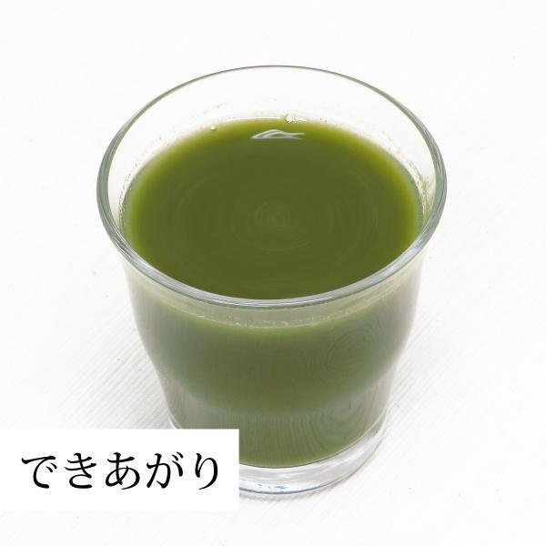 国産3種の青汁粉末100g×5個 明日葉 あしたば アシタバ ゴーヤ 長命草 ボタンボウフウ 無添加 100% 青汁 パウダー クロロゲン酸 ポリフェノール|hl-labo|10
