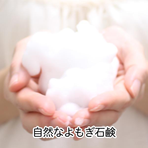 よもぎ石鹸4個入り×5個 地の塩社 無添加 20個 ヨモギエキス せっけん 石けん 固形ソープ 自然派|hl-labo|03