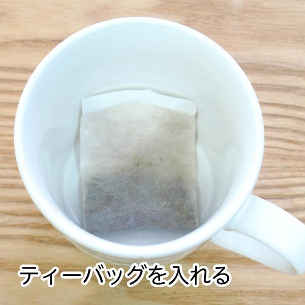 送料無料 減脂茶・箱60パック ギムネマ、甘草、決明子、サンザシ配合のダイエット茶|hl-labo|03