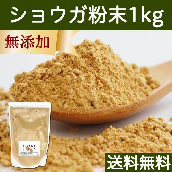 ショウガ 粉末 1kg 生姜 パウダー しょうが 粉末 ジンジャー