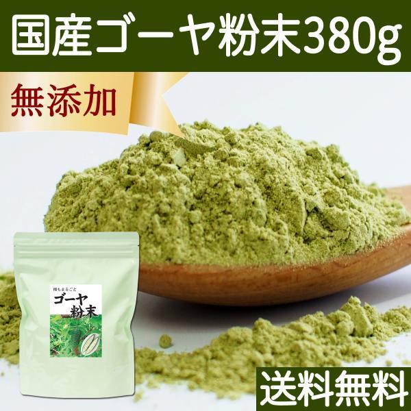 送料無料 国産ゴーヤ粉末 380g 沖縄産 青汁 サプリメント 無添加 まるごと 丸ごと 100% ゴーヤー パウダー 苦瓜 にがうり ジュースに|hl-labo