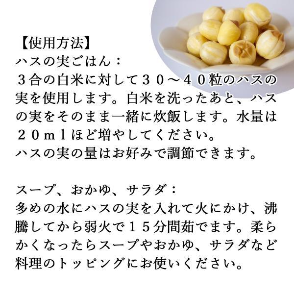 ハスの実1kg 蓮の実 はすの実 アルカロイド 薬膳茶の材料にも 業務用 蓮肉 ハス肉 送料無料 hl-labo 03