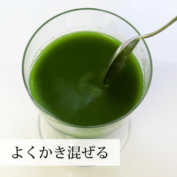 青汁粉末はミキサーにかけてスムージーにも使えます