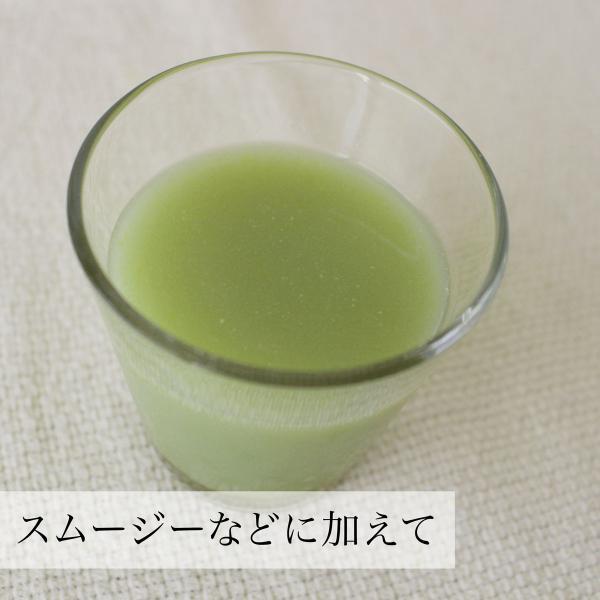 甘酒粉末100g×3袋 (砂糖不使用) 国内製造の酒粕と米麹を使用。酵素食品の代表格 発酵食品 送料無料|hl-labo|07